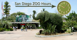 San Diego Zoo Hours